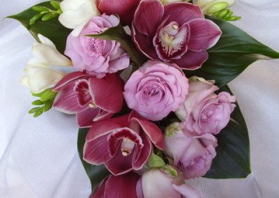 orchids, roses, winter , pink
