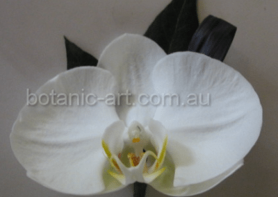 orchid button hole
