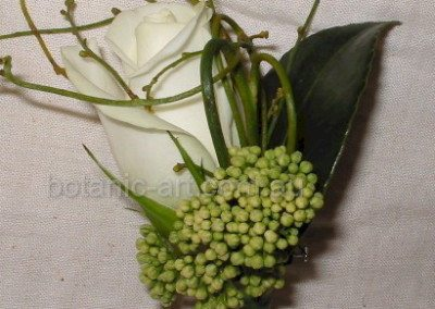 white rose and buds
